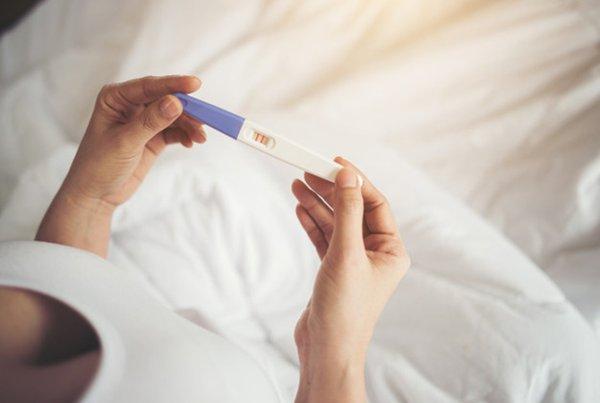Perkembangan Kehamilan Minggu Ke 2