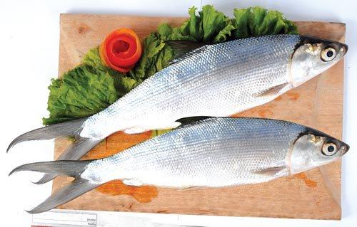 Manfaat Ikan Bandeng untuk Bayi