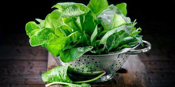 8 Sayuran Pelancar ASI yang Ampuh dan Enak